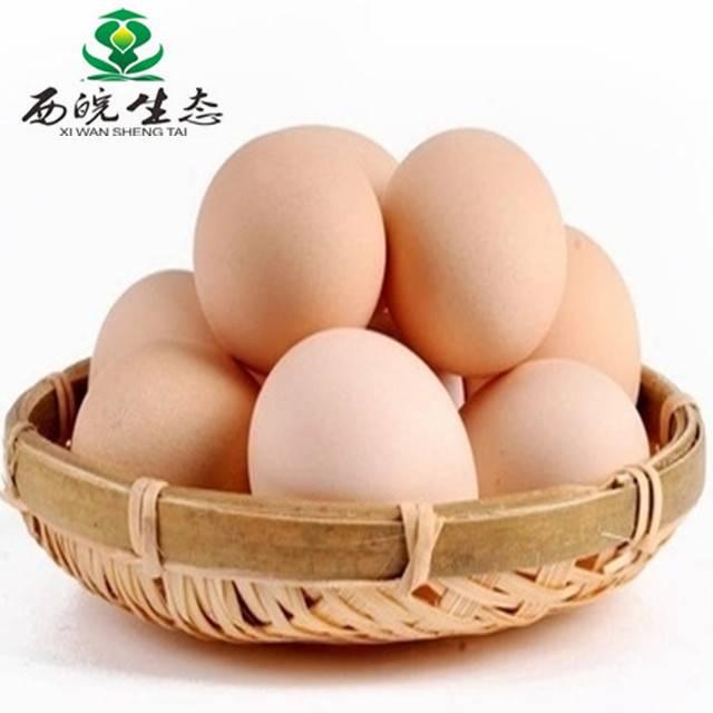 西皖生态 林间散放 土鸡蛋40枚普通装