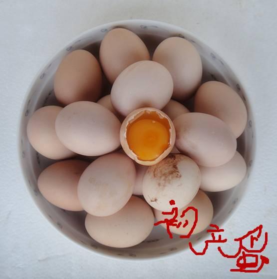巴根草牌  林间散养  无公害   生态土鸡初产蛋   40枚珍珠棉包装