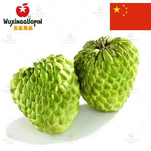 【五星果品】台湾水果基地  巨无霸释迦  优选2个