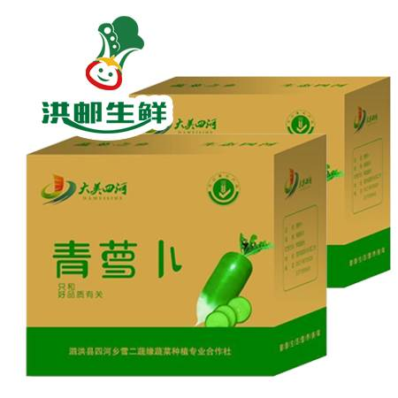 【尝鲜预售】泗洪--四河青萝卜 有机 无公害 无农药 里外青养生脆皮萝卜